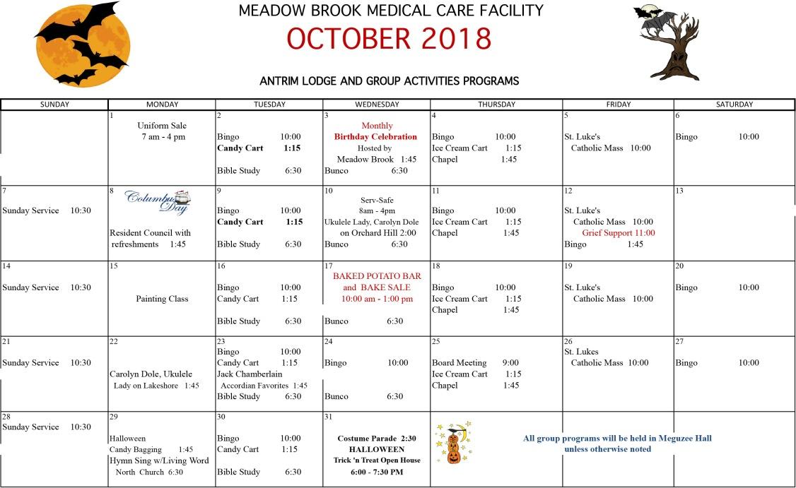 Meadow Brook Group Activities 2